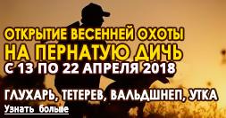 Открытие весенней охоты на пернатую дичь с 13.04 по 22.04